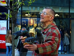 man feeding pigeons (Miroslav Vajdi) Tags: city trip travel wallpaper vacation europe cityscape croatia tourist adventure zagreb  travelphotography greatnature i beautifullnature  instatravel m1r0slavv cleannature   vip