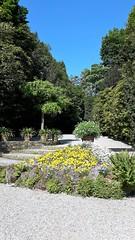 isole borromee (14) (giangian239) Tags: lago acqua blu giardino maggiore albero verde prato statua monumento isola isole borromee madre bella superiore panorama paesaggio lungolago