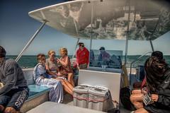 Reflection (emptyseas) Tags: ocean usa west port marina keys island boat nikon key florida dolphin watch straits reflction d800 galleon emptyseas