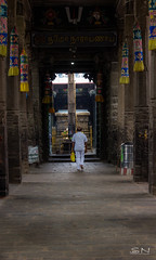 The Journey (Shan | Capture Machine) Tags: morning india man canon temple artwork god walk traditional prayer ngc 1855mm shan tradition chennai tamilnadu twop cwc ancientart canonphotography triplicane tamilculture lifeintamilnadu goingahead chennaiweekendclickers lifeinchennai capturemachine shanmuganathanphotography walk536