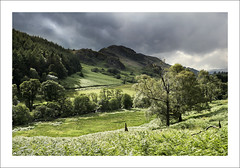 CRAPPICH (SwaloPhoto) Tags: trees summer green clouds forest scotland perthshire thehighlands glenlednock crappichhill fujixt1 fujinonxf18135mm f3556rlmoiswr