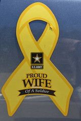 Can you say 'BIRGer'? (Omunene) Tags: birger ribbon usarmy armywife brainlesstwat