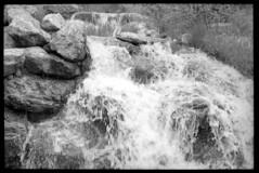 2016-07-03-0012 (Cosmic Ray's) Tags: blackandwhite mountains film nature 35mm landscape kodak olympus 35mmfilm scanned wyoming tetons jacksonhole grandtetonnationalpark phelpslake rockefellerpreserve epsonv600