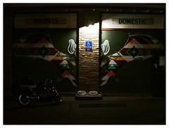 Southwestern Bat (daveelmore) Tags: copyright art night austin painting bat motorcycle manualfocus allrightsreserved garagedoors congressave legacylens penfm43adapter hzuiko42mm112 sothwesternpatterns daveelmore