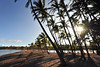 Marriott beach morning (ao3inca) Tags: hawaii nikon bigisland nikond700 marriottwaikoloa