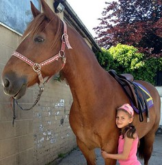 Little and Large (chezabela) Tags: horse girl children chestnut welshcob sectiond welshsecd
