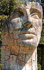 Tyndareus Cracked (Gordon Mould) Tags: wood italy sculpture stone garden lens florence nikon flickr head kitlens kit boboligardens boboli lightroom 18105 igormitoraj d90 18105mm nikond90 crackedhead tyndareuscracked