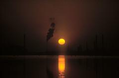 Marghera nella laguna di Venezia(1) (tullio dainese) Tags: natura nature mare sea tramonto sunset allaperto outdoor venedig venise venecia 威尼斯 венеция soe