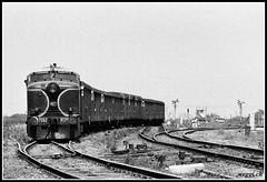 Vijayawada3 (weggi.ch) Tags: indianrailways wdm alco diesel historic bw