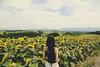 Sunflower Field (Amanda Mabel) Tags: summer portrait sky mountains flower japan clouds back hokkaido sister sunflowers faceless furano flowerfarm flowerfield sunflowerfield amandamabel