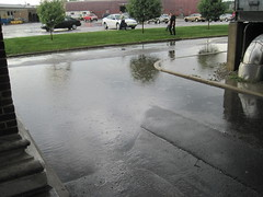 """Rain • <a style=""""font-size:0.8em;"""" href=""""http://www.flickr.com/photos/61091961@N06/9394100022/"""" target=""""_blank"""">View on Flickr</a>"""