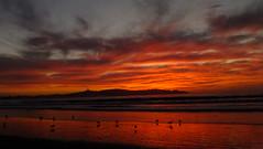 Coquimbo & Sunset (Mauro_LaSerena) Tags: ocean chile sunset sea mer seagulls sol beach del clouds spectacular de atardecer coquimbo mar avenida photo reflex fuji foto pacific playa paisaje finepix nubes reflejo nuages puesta gaviotas pacifico oceano laserena fotografa espectacular photografie nieges hs25exr