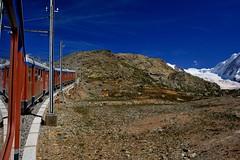 The Train Run Through the Rocky Mountains of the Alps (jerryjcwu) Tags: travel summer mountains alps landscape switzerland scenery europe railway gornergrat nikkor d600 alpinegrassland afsnikkor28mmf18g