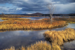 Winter Comes to the Adirondacks (Decaseconds) Tags: newyork tree water landscape adirondacks hills hdr tupperlake