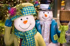 Frosty Fashionistas