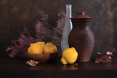 December's Wintery Breath (panga_ua) Tags: winter fruits yellow bottle ceramics december shapes matte woodenbowl quinces driedleaves richcolors decemberswinterybreath guelderroseberry