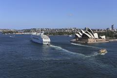 Pacific Jewel (Halans) Tags: travel london sydney po cruiseship sydneyharbour soh sydneyoperahouse carnivalcruises pacificjewel