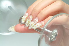 "Nail Design <a style=""margin-left:10px; font-size:0.8em;"" href=""http://www.flickr.com/photos/113576083@N04/11792364014/"" target=""_blank"">@flickr</a>"