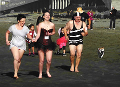 Everyone Loves a Fun Run (Steve Taylor (Photography)) Tags: charity newzealand christchurch dog 6 sun beach june swimming costume outfit sand 8 canterbury southisland basque newbrighton togs 2013 undy5hundy