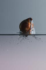 09 fvrier 2014-40--33 (mgaloseau) Tags: water speed photography photo high nikon eau europe european foto flash picture splash liquid 18200 highspeed d7000 sb9100