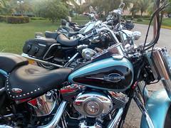Harley Group (Hear and Their) Tags: bike norway hotel tour cuba harley biker davidson atlantico guardalavaca