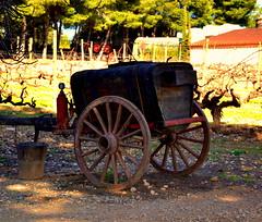Màquina de sulfatar, celler Augustus Forum, Sant Vicenç de Calders. (Angela Llop) Tags: spain eu catalonia vineyards penedes vendrell