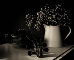 Still life with a violin (V Photography and Art) Tags: light shadow stilllife sunlight white black monochrome contrast dark moody foliage violin lowkey whitejug