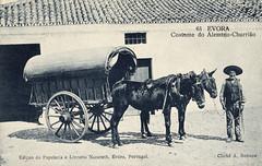 Alentejo 0-06 ( Portimagem) Tags: costumes portugal postcard postal alentejo vinho historia cortia patrimnionacional mondadeiras vindimadeiras