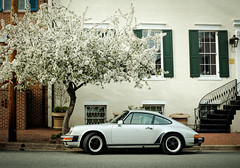 Spring Porsche (ep_jhu) Tags: road old windows tree brick lamp alexandria
