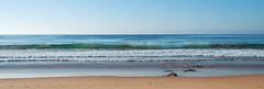 Mona Vale (NinianLif) Tags: seascape beach waves earlymorning monavale northernbeaches pittwatercouncil warringahcouncil beapiercephotography