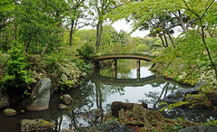 Japanese Water Garden (brentflynn76) Tags: park bridge lake nature water japan garden tokyo photo waterscape rikugien