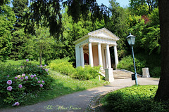 The Mozart Temple in the beautiful Kurpark (Aly D.) Tags: park temple austria sterreich baden mozart parc kurpark templu