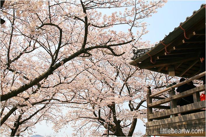 紀三井寺-73
