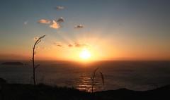 going west (aquepontochegamos) Tags: voyage park trip travel viaje sunset sea newzealand summer sunlight praia beach bay mar pacific spirits nz verano viagem cape verão maori bayofislands northland kiwi voltaaomundo rtw travelers pacifico oceania mithology mitologia reigna aquepontochegamos routetheworld