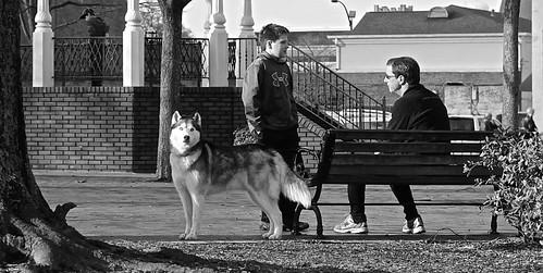 Standing guard. Marietta square, Georgia