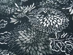 Fluttering Chrysanthemum Flowers Grey/Black -- EK-QS38275E (ikoplus) Tags: flowers summer black flower floral grey big sewing retro fabric commercial chrysanthemum cosmos fluttering fabrics zakka suppliers greyblack ikoplusfabric ekqs38275e
