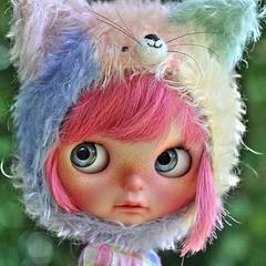 Eu tenho um sonho impossível, ver todas as minhas Blythes customizadas pelo Marlon. I have an impossible dream, see all my Blythes customized by Dolls Kingdom. Pict by Marlon #blythe #primadollylondon #pdlondon #fbl #blythecustom #ooak #marlondk #dollskin