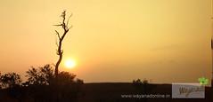 wayanad tourist places (wayanad tourism) Tags: trekking hill wayanad kuruvadweep kuruva muneeswaran