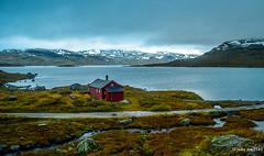 By the lake (joaomatts) Tags: lake norway ga lago norge nikon view norwegen vista noruega 1855mm d5100