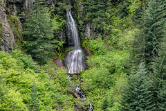 DSC09491.jpg (jjdun7) Tags: travel nature water oregon creek forest river landscape countryside waterfall stream lifestyle environment landforms 2016 2015 sardinecreek