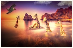 bath at sunset (Swissrock) Tags: sunset photoshop bath digitalart may surreal giraffe photoart challenge digitalpaint 2016 photomatix pixlr andykobel