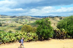 Valley of the Temples - View of the countryside 2 (Sussexshark) Tags: holiday countryside view sicily vacanza sicilia agrigento valledeitempli valleyofthetemples 2016