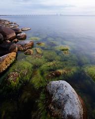 resund II (Gustaf_E) Tags: bridge skne sweden sverige bro malm stad resund resundsbron kvll