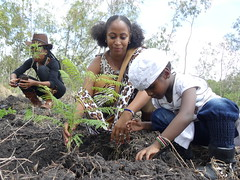 Tree planting Day in Kajiado! (Cookswell Jikos) Tags: forestry kisaju treeplantingkenya