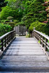 Japanese Tea Garden (dalecruse) Tags: sanfrancisco california green japan garden outdoors japanese japanesegarden tea outdoor japaneseteagarden teagarden lightroom japanesetea
