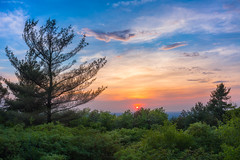 Sunset at Blue Hills (sergey.korytnikov) Tags: blue hills reservation bluehillsreservation massachusetts ma sunset sunsets clouds smog trees forest