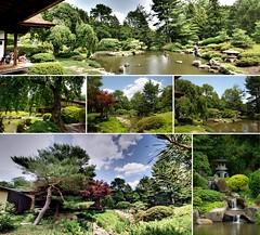 Shofuso - Japanese House & Garden - Philadelphia, PA (C r u s a d e r) Tags: philadelphia collage garden pond quiet peace pennsylvania mosaic pa teahouse fairmountpark japanesehouse shofuso pentaxk3