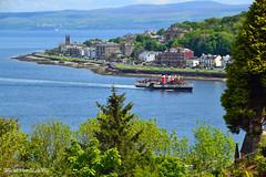 (Zak355) Tags: scotland riverclyde boat ship scottish vessel shipping bute rothesay paddlesteamer isleofbute pswaverley
