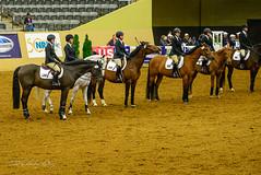 160505_D600_3684.jpg (shirley319) Tags: horse unitedstates lexington kentucky may nationals equestrian 2016 d600 horsecompetition ihsa kentuckyhorsepark