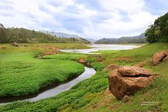 Anayirangal Dam (Navaneeth Kishor) Tags: landscape kerala monsoon munnar keralam chinnakanal sooryanelli anayirangal anayirangaldam
